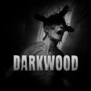 Darkwood per PlayStation 4