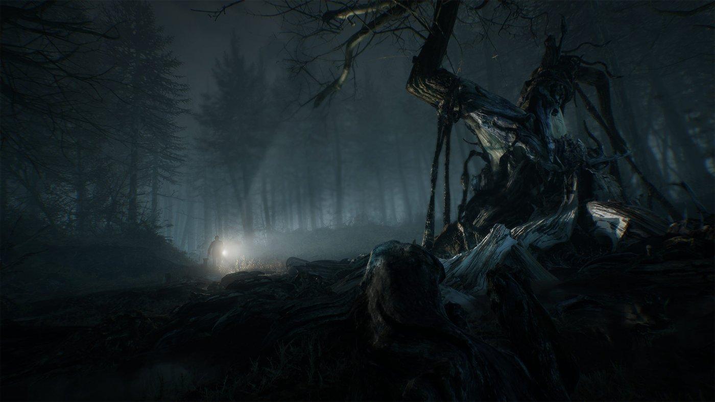 Risultati immagini per blair witch gioco