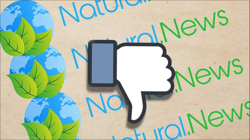 Facebook Fake News Natural News Ban 1