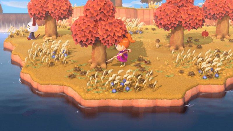 Animal Crossing New Horizons 5