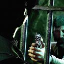 Call of Cthulhu su Nintendo Switch, video di gameplay e confronto con PS4