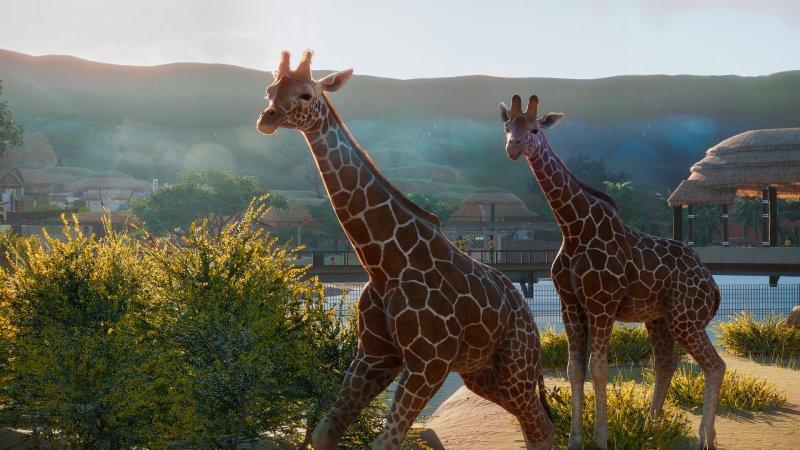 Planet Zoo 15