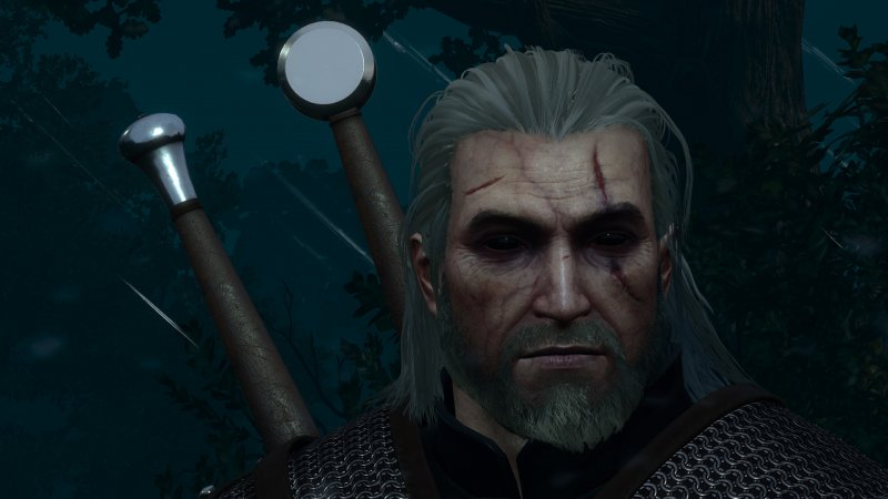 The Witcher Mod 4