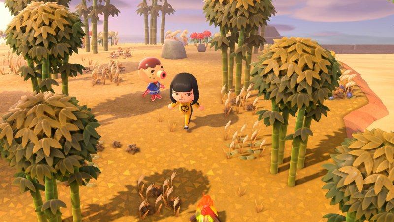 Animal Crossing New Horizons 12