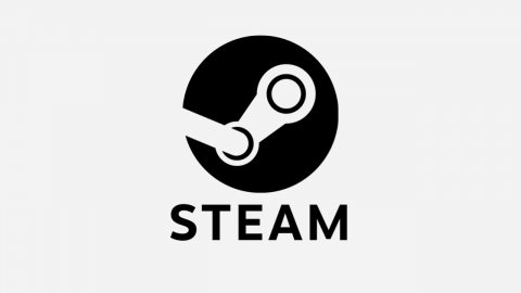 Steam: Remote Play Together can also be used with friends without an account