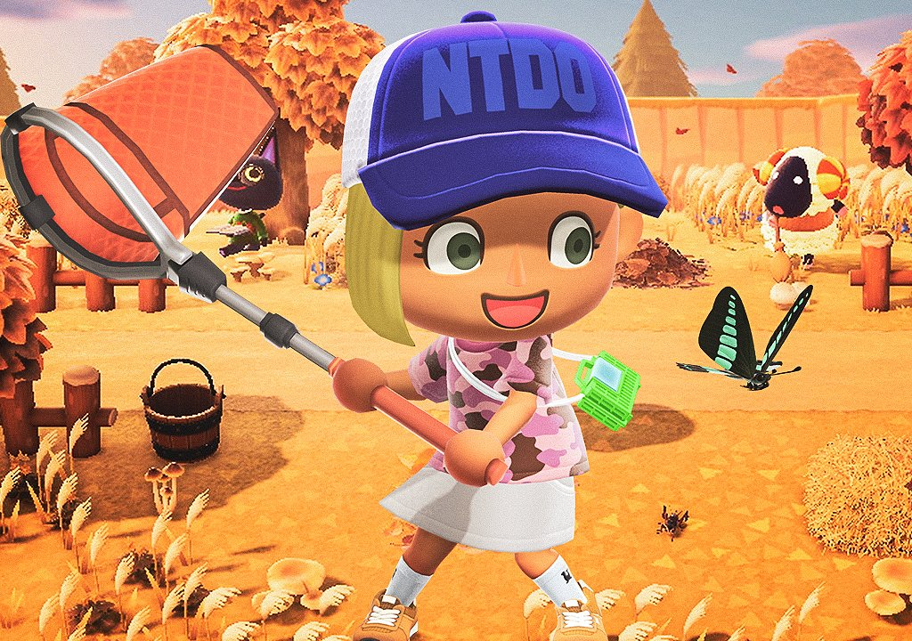 Animal Crossing: New Horizons, which animals to catch before the end of November