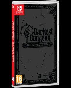 Darkest Dungeon per Nintendo Switch