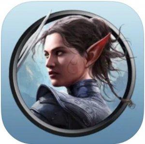 Divinity: Original Sin II - Definitive Edition per iPad